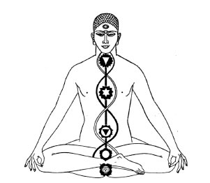 The 7 chakras