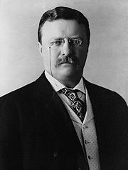 Portrait of Teddy Roosevelt (click to view image source)