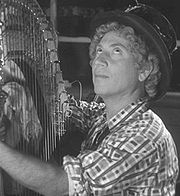 Portrait of Harpo Marx (click to view image source)