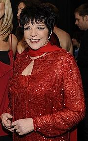 Portrait of Liza Minnelli (click to view image source)