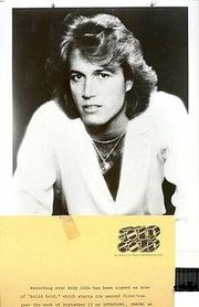 Portrait of Andy Gibb (click to view image source)