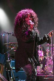 Portrait of Chaka Khan (click to view image source)