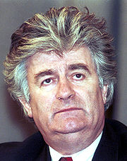 Portrait of Radovan Karadzic (click to view image source)