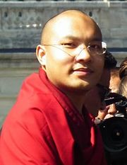 Portrait of Ogyen Trinley Dorje (click to view image source)