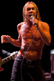 Portrait of Iggy Pop (click to view image source)